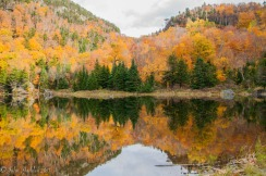 The pond at the top of the Appalachian Gap during peak foliage in the Green Mountains.