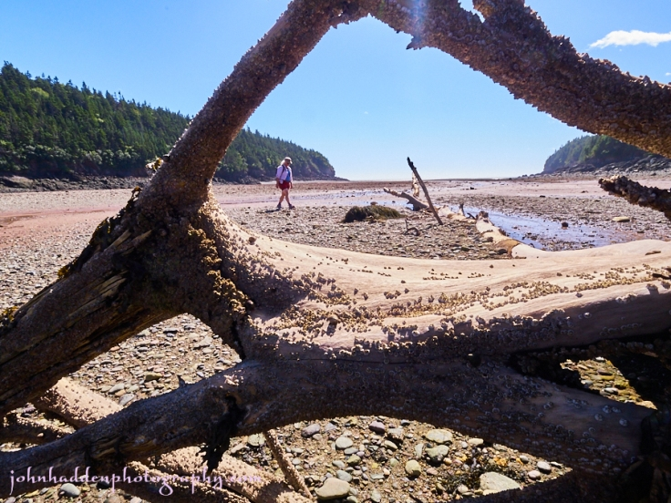 low-tide-wolf-point